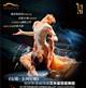 俄罗斯圣彼得堡艾夫曼芭蕾舞团《安娜・卡列尼娜》